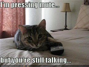 I'm pressing mute...  but you're still talking...
