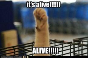 it's alive!!!!!!