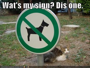 Wat's my sign? Dis one.