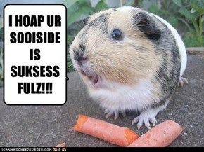 I HOAP UR SOOISIDE IS SUKSESSFULZ!!!