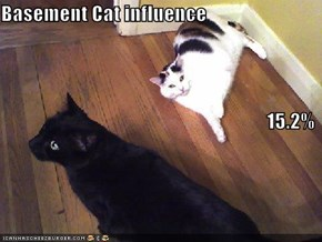 Basement Cat influence 15.2%