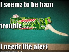 I seemz to be hazn trouble i needz life alert