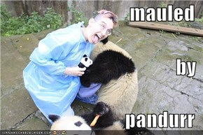 mauled  by pandurr