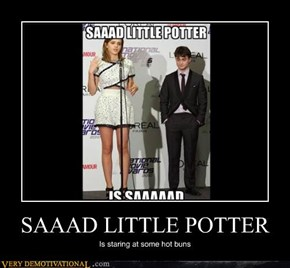 SAAAD LITTLE POTTER