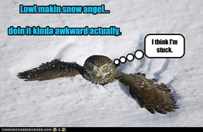 Lowl makin snow angel...  doin it kinda awkward actually.
