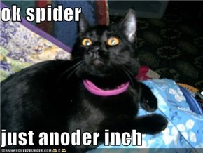 ok spider  just anoder inch