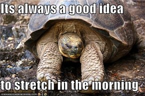 Its always a good idea  to stretch in the morning