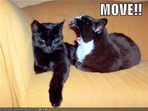 MOVE!!