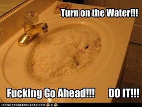 Turn on the Water!!!