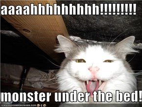 aaaahhhhhhhhh!!!!!!!!!  monster under the bed!!!