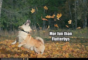 I LUV Fall!