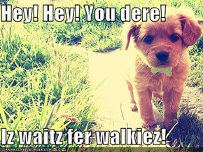Hey! Hey! You dere!  Iz waitz fer walkiez!