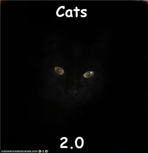 Cats  2.0