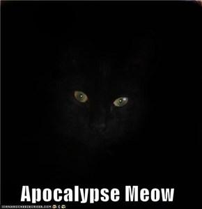 Apocalypse Meow