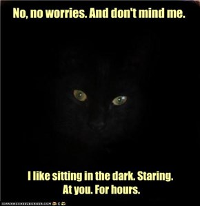 And this is a purr. Not a grrr. Truly.