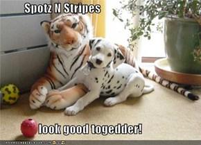 Spotz N Stripes