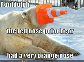 Rouldolph the red nose polor bear had a very orange nose