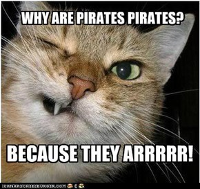 WHY PIRATES ARE PIRATES