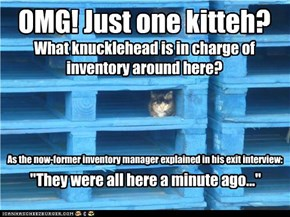Kitteh inventory management: Not for the faint of heart
