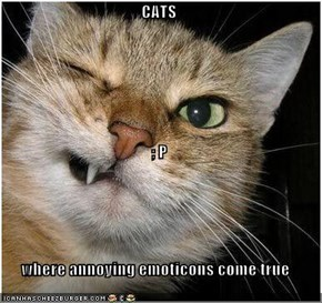 CATS ; P where annoying emoticons come true