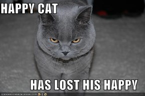HAPPY CAT  HAS LOST HIS HAPPY
