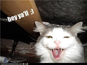 hey ya'll  ;)