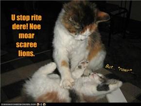 U stop rite dere! Noe moar scaree lions.