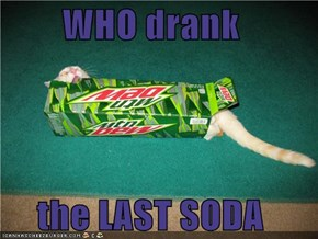 WHO drank   the LAST SODA