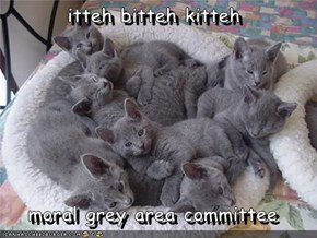 itteh bitteh kitteh  moral grey area committee
