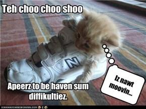Teh choo choo shoo