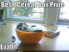 Best  Cereal Box Prize  Evah!