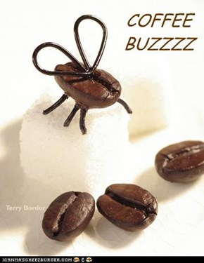 COFFEE BUZZZZ