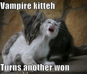 Vampire kitteh  Turns another won
