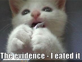 The evidence - I eated it