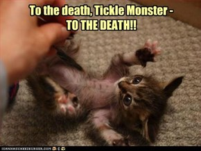 brave little kitteh
