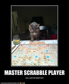 MASTER SCRABBLE PLAYER