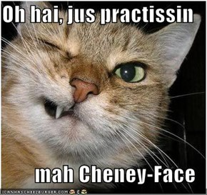 Oh hai, jus practissin  mah Cheney-Face