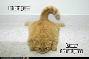 Inflattipuss