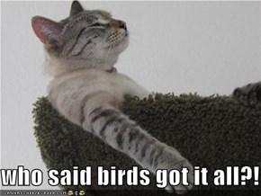who said birds got it all?!