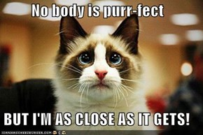 No body is purr-fect  BUT I'M AS CLOSE AS IT GETS!