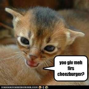 yoo giv meh firs cheezburger?