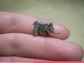 Tiniest Elephant
