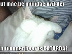 ut mae be mundae owt der  but unner heer is CATURDAE