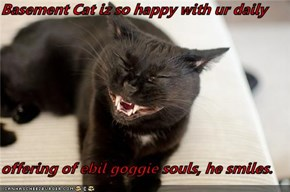 Basement Cat iz so happy with ur daily  offering of ebil goggie souls, he smiles.