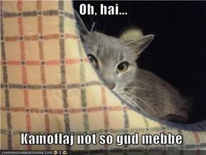 Oh, hai...    Kamoflaj not so gud mebbe