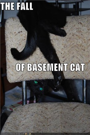 THE FALL OF BASEMENT CAT
