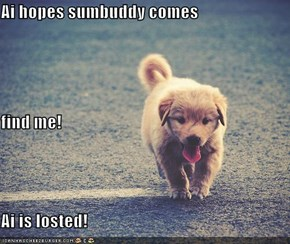 Ai hopes sumbuddy comes find me! Ai is losted!