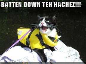 BATTEN DOWN TEH HACHEZ!!!