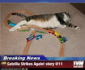 Breaking News - Catzilla Strikes Again! story @11