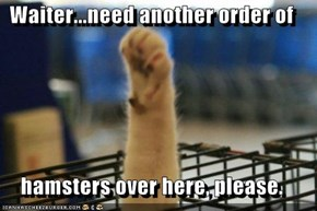 Waiter...need another order of  hamsters over here, please.